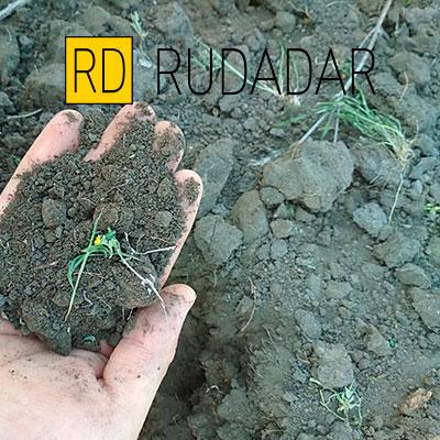 доставка рассыпчатого чернозема в Астрахани