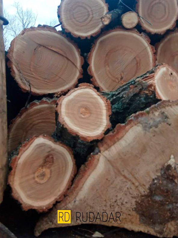 заказать дрова в Тольятти