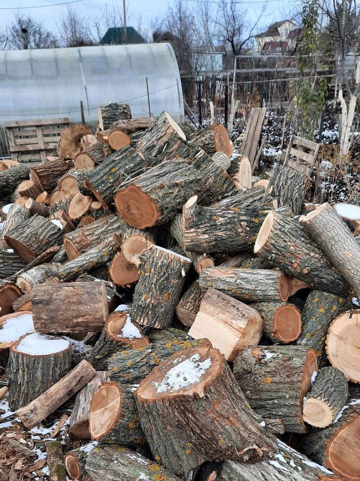 дрова заказать